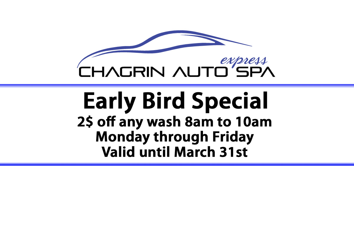 early bird special (1)